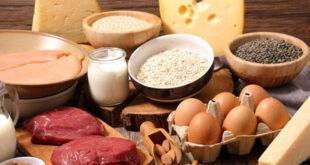 Apa yang dimaksud dengan protein?
