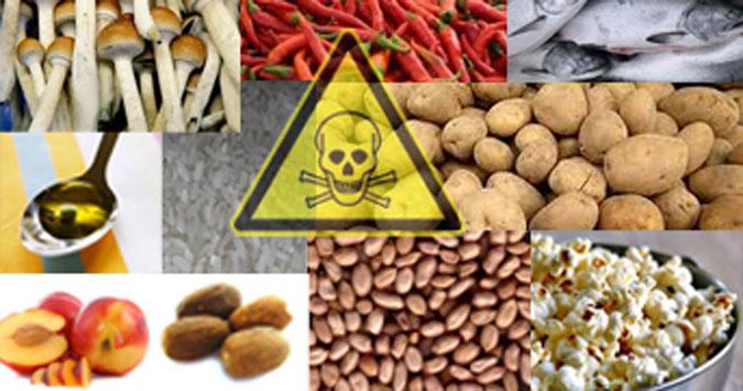 3 Macam Makanan Penyebab Kematian Mendadak