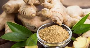 Khasiat dan Manfaat Temulawak (Tanaman Herbal Asli Indonesia)